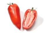 Tomate Andine cornue