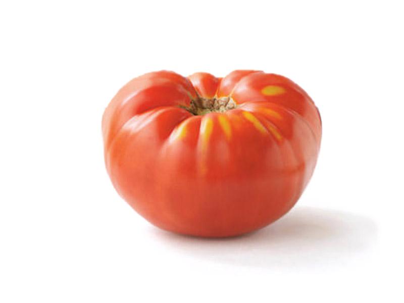 Tomate Brandywine