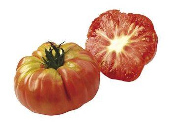 Tomate Potiron Ecarlate
