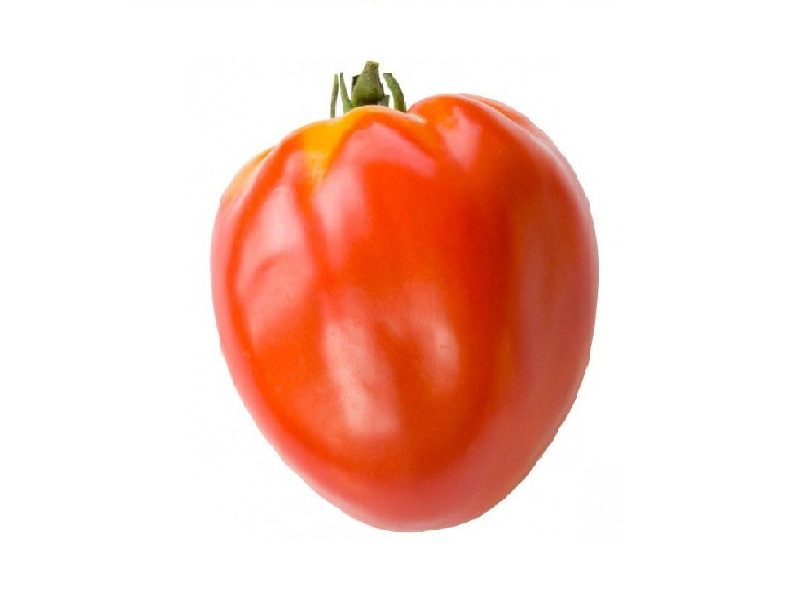 tomate-coeur-de-boeuf