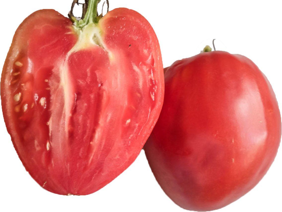 Tomate Coeur De Boeuf Rose Le Jardin D Albert